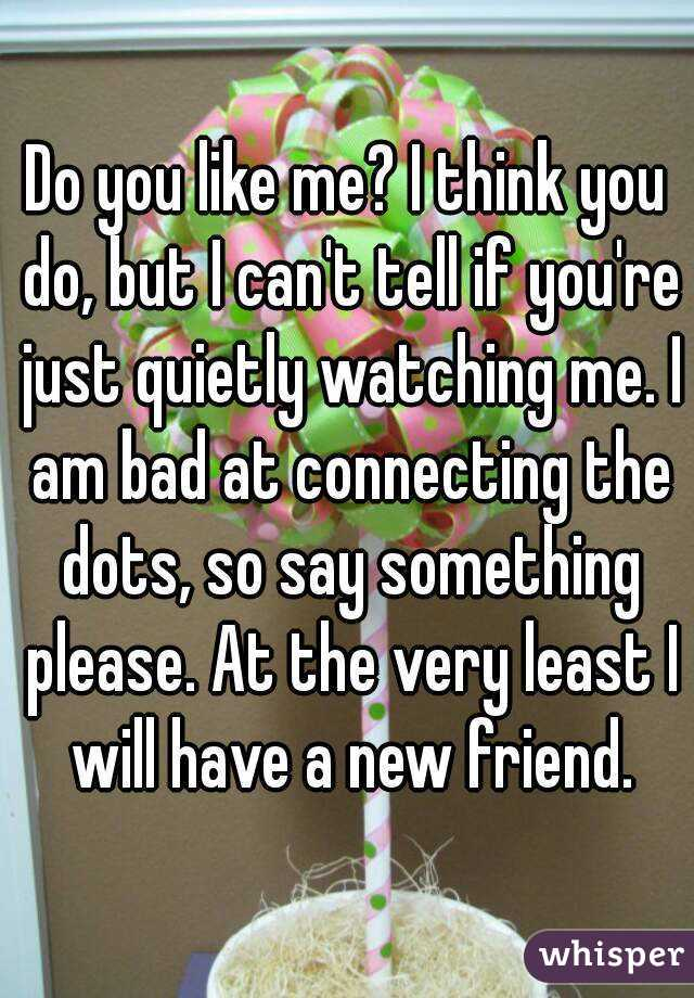 Do you like me? I think you do, but I can't tell if you're just quietly watching me. I am bad at connecting the dots, so say something please. At the very least I will have a new friend.