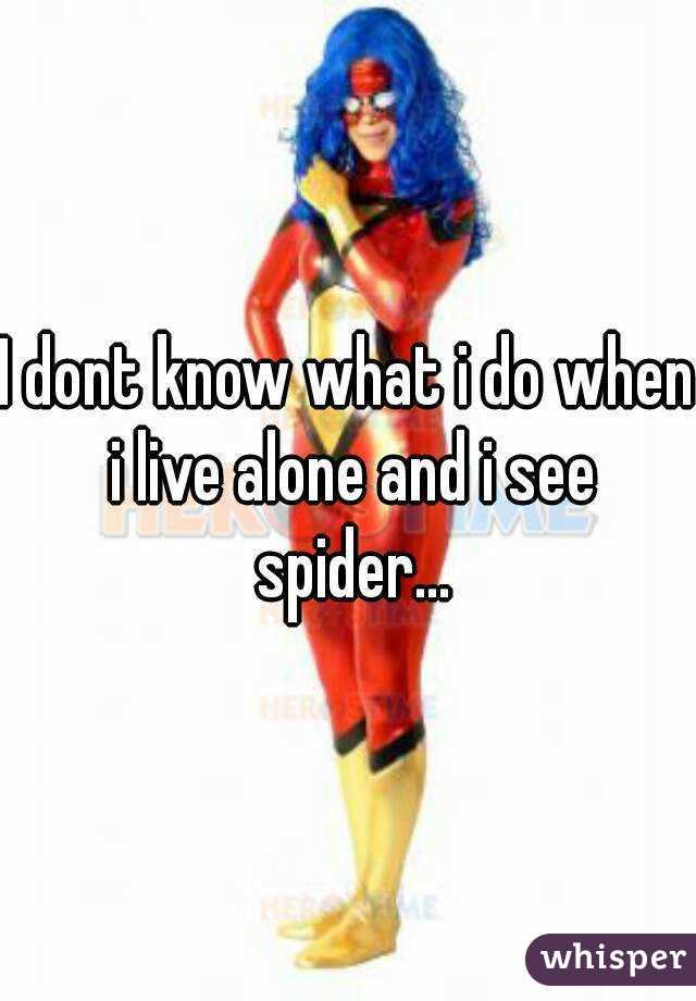 I dont know what i do when i live alone and i see spider...