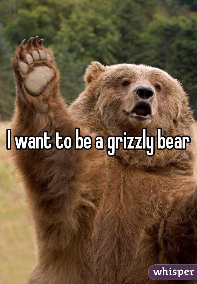 I want to be a grizzly bear
