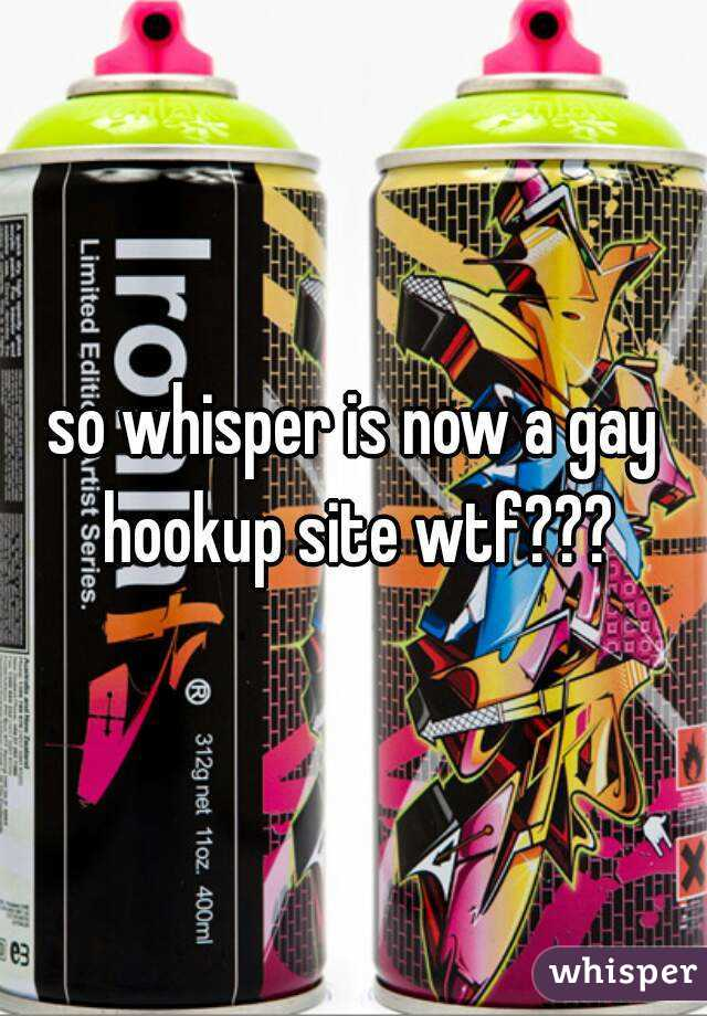 gay hookup now