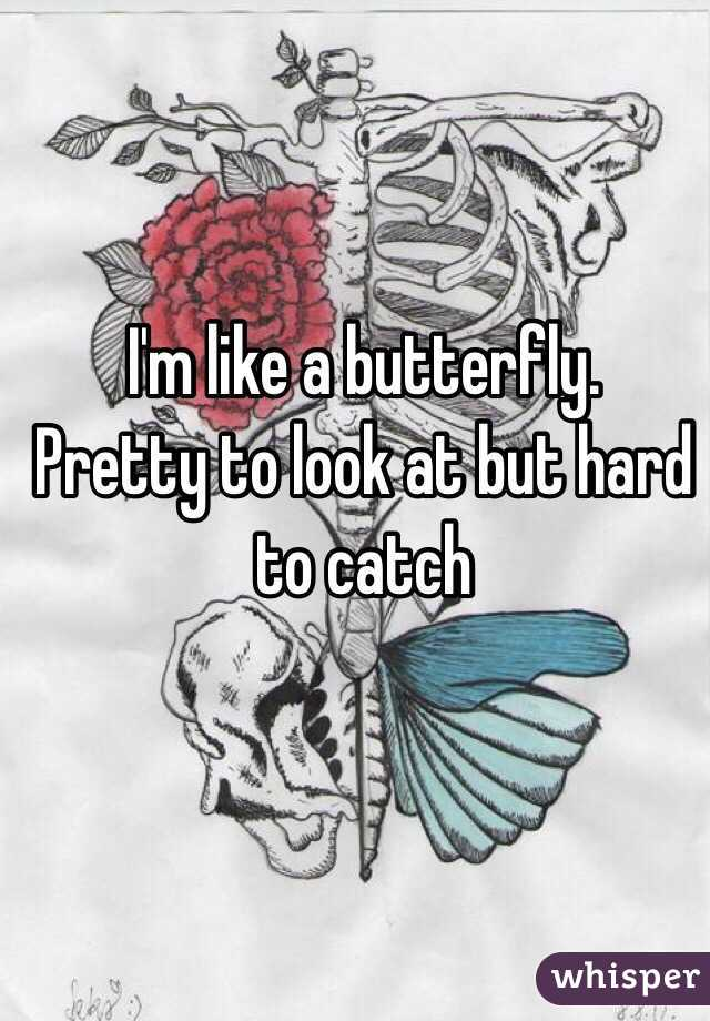 I'm like a butterfly. Pretty to look at but hard to catch