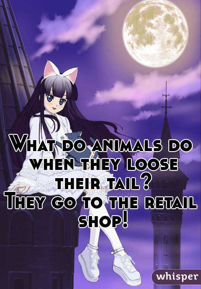What do animals do when they loose their tail? They go to the retail shop!