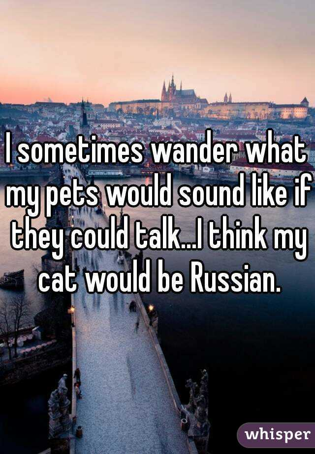 I sometimes wander what my pets would sound like if they could talk...I think my cat would be Russian.