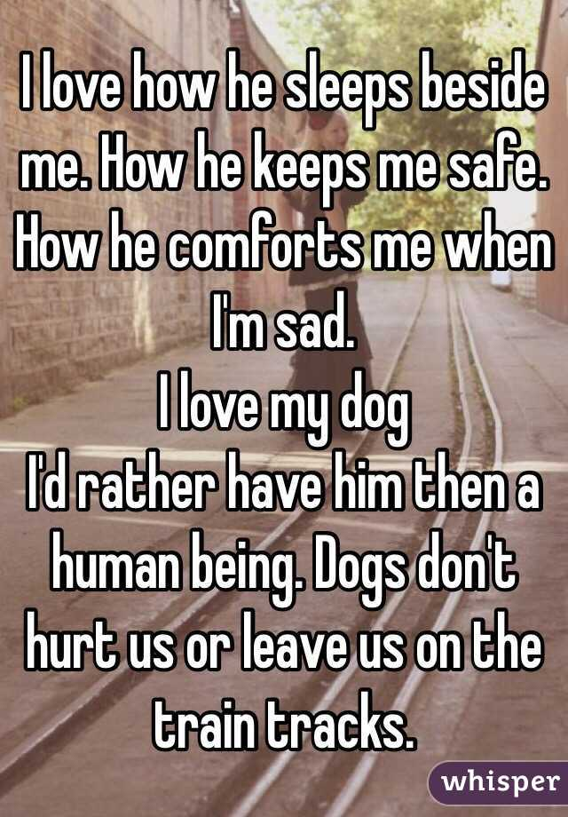 I love how he sleeps beside me. How he keeps me safe. How he comforts me when I'm sad.  I love my dog I'd rather have him then a human being. Dogs don't hurt us or leave us on the train tracks.