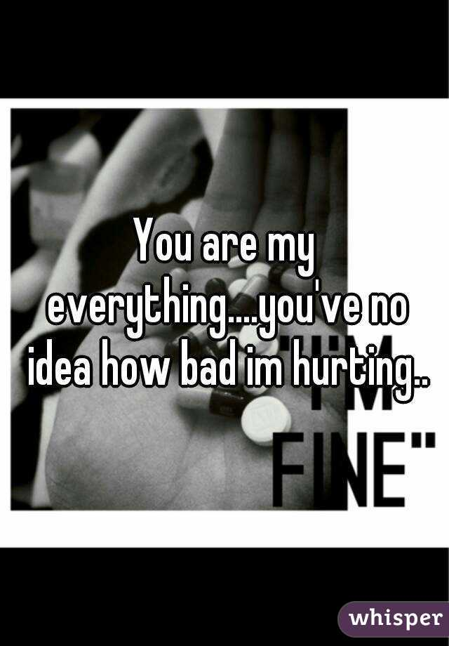 You are my everything....you've no idea how bad im hurting..