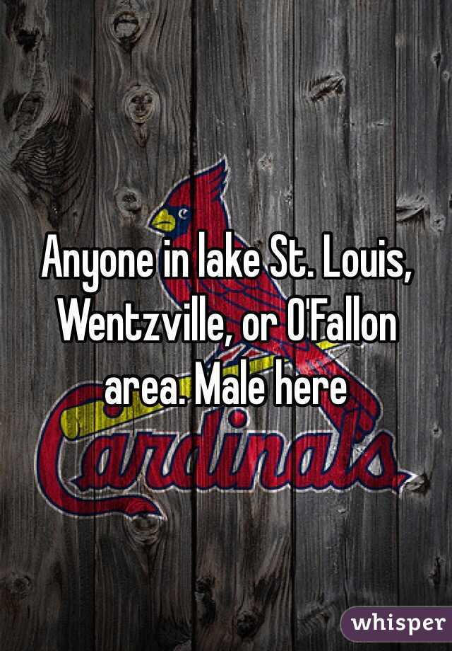 Anyone in lake St. Louis, Wentzville, or O'Fallon area. Male here