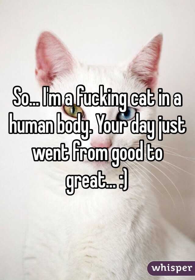 So... I'm a fucking cat in a human body. Your day just went from good to great... :)
