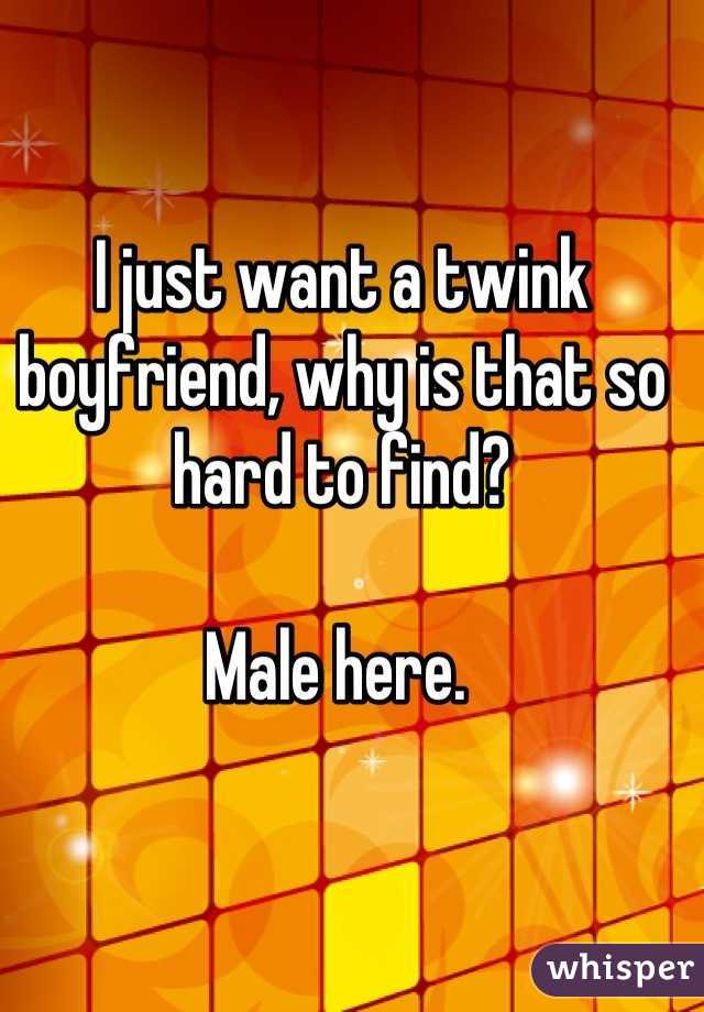 I just want a twink boyfriend, why is that so hard to find?   Male here.