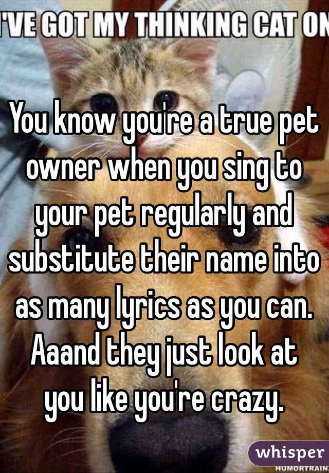 You know you're a true pet owner when you sing to your pet regularly and substitute their name into as many lyrics as you can. Aaand they just look at you like you're crazy.