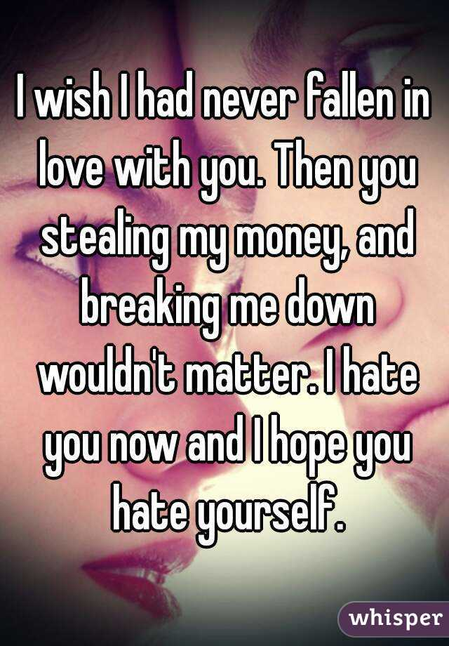 I wish I had never fallen in love with you. Then you stealing my money, and breaking me down wouldn't matter. I hate you now and I hope you hate yourself.