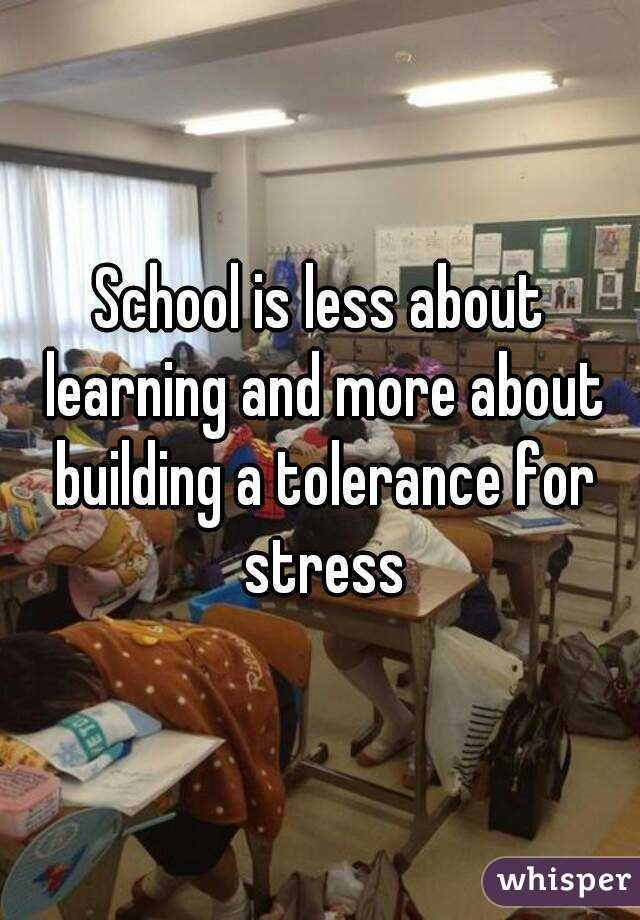 School is less about learning and more about building a tolerance for stress