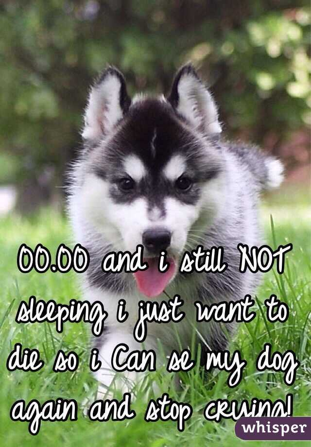 00.00 and i still NOT sleeping i just want to die so i Can se my dog again and stop crying!