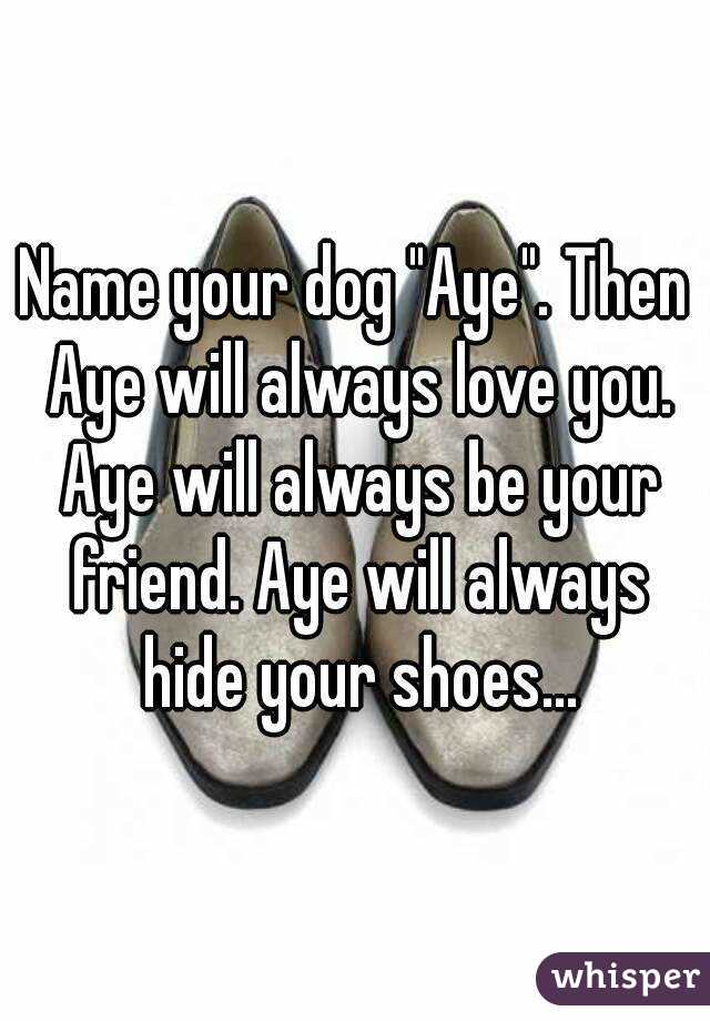 "Name your dog ""Aye"". Then Aye will always love you. Aye will always be your friend. Aye will always hide your shoes..."