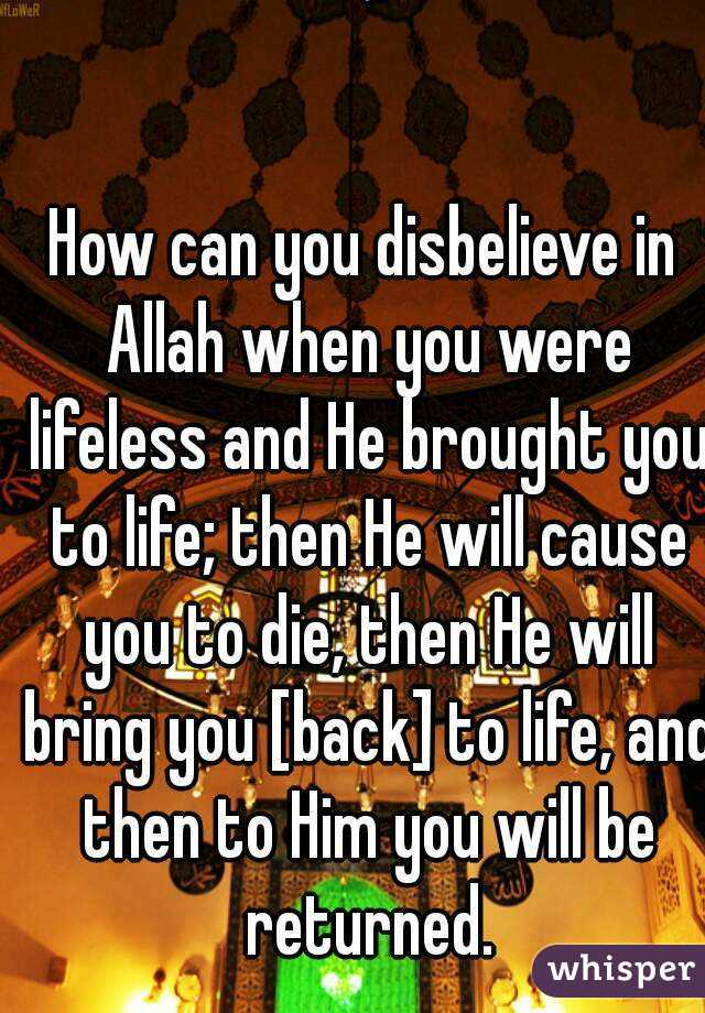 َ  How can you disbelieve in Allah when you were lifeless and He brought you to life; then He will cause you to die, then He will bring you [back] to life, and then to Him you will be returned.