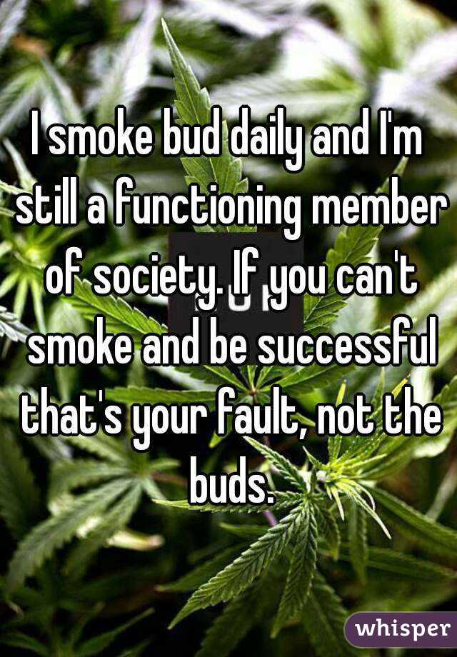 I smoke bud daily and I'm still a functioning member of society. If you can't smoke and be successful that's your fault, not the buds.