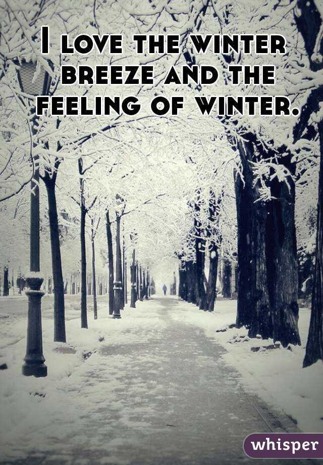 I love the winter breeze and the feeling of winter.