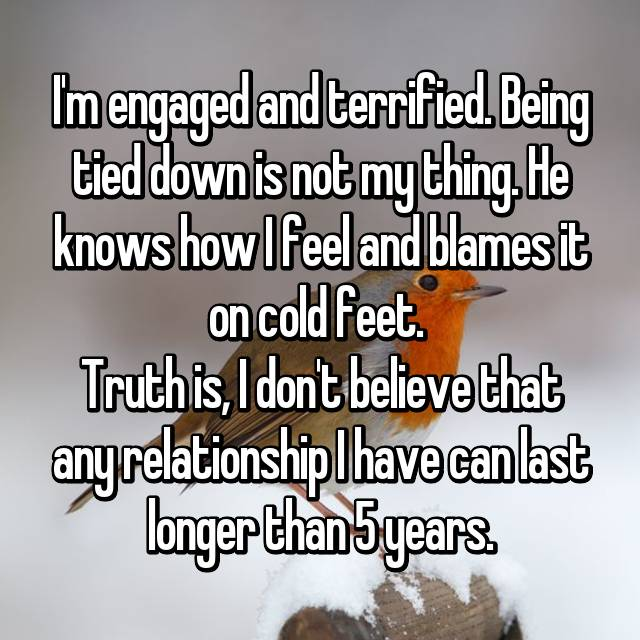 I'm engaged and terrified. Being tied down is not my thing. He knows how I feel and blames it on cold feet.  Truth is, I don't believe that any relationship I have can last longer than 5 years.