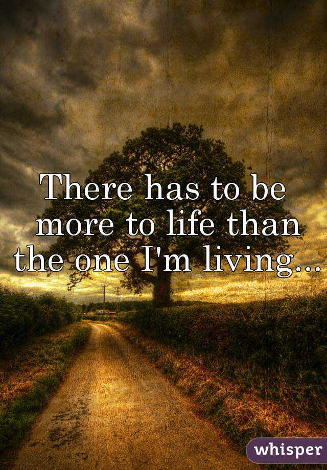 There has to be more to life than the one I'm living...