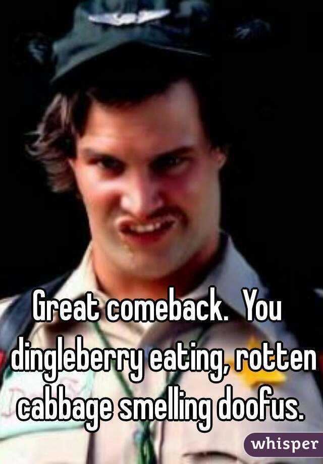Great comeback.  You  dingleberry eating, rotten cabbage smelling doofus.