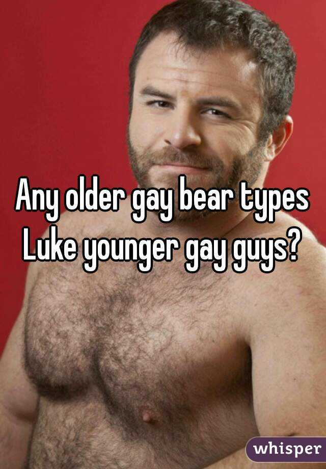 Gay bear older