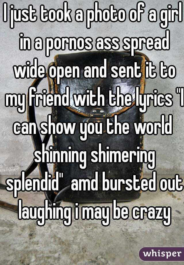 """I just took a photo of a girl in a pornos ass spread wide open and sent it to my friend with the lyrics """"I can show you the world  shinning shimering splendid""""  amd bursted out laughing i may be crazy"""