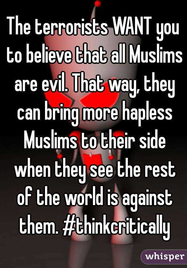 The terrorists WANT you to believe that all Muslims are evil. That way, they can bring more hapless Muslims to their side when they see the rest of the world is against them. #thinkcritically