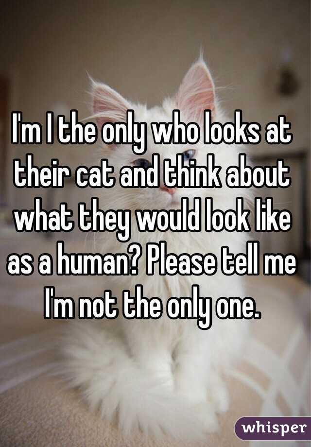 I'm I the only who looks at their cat and think about what they would look like as a human? Please tell me I'm not the only one.