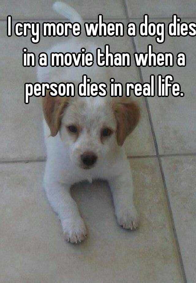 I cry more when a dog dies in a movie than when a person