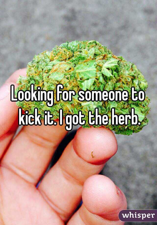 Looking for someone to kick it. I got the herb.