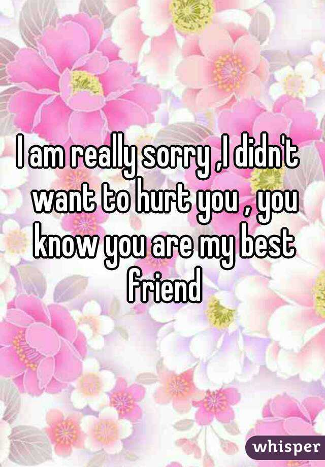 i am really sorry i didn t want to hurt you you know you are my