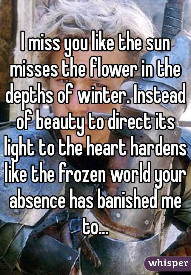 i miss you like the sun misses the flower in the depths of winter instead