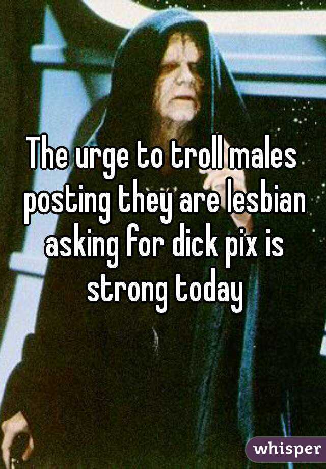 The urge to troll males posting they are lesbian asking for dick pix is strong today