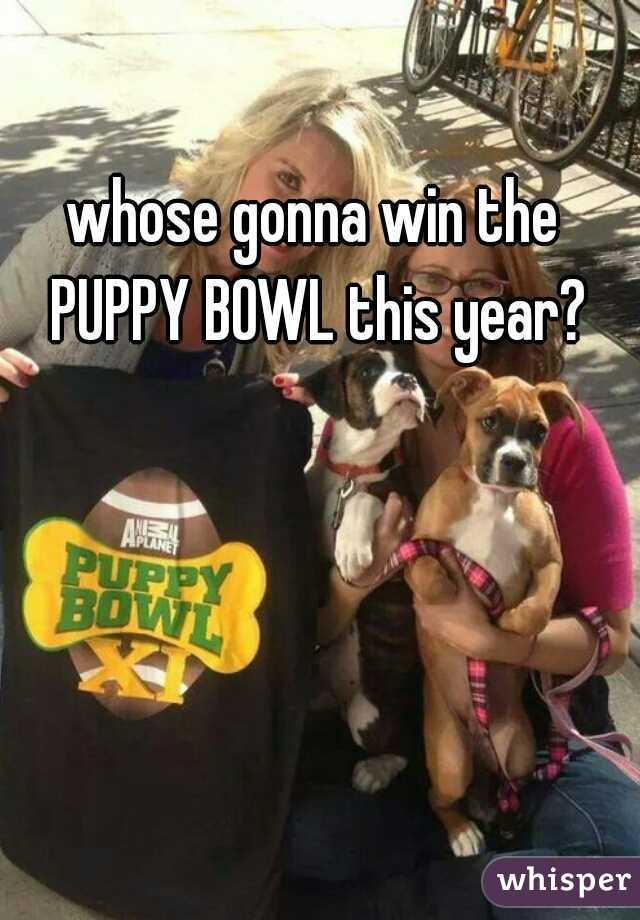 whose gonna win the PUPPY BOWL this year?