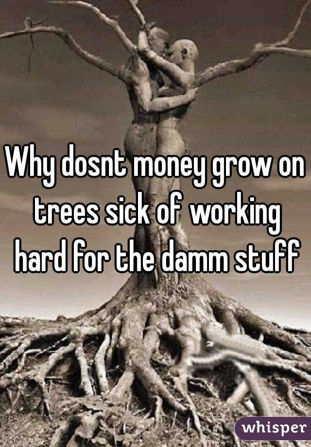 Why dosnt money grow on trees sick of working hard for the damm stuff