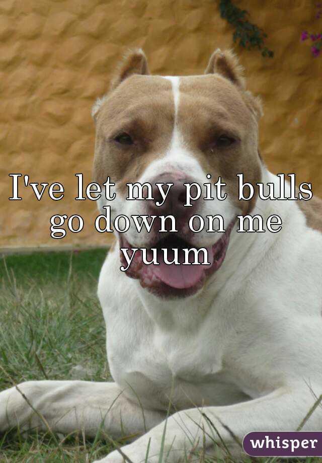 I've let my pit bulls go down on me yuum