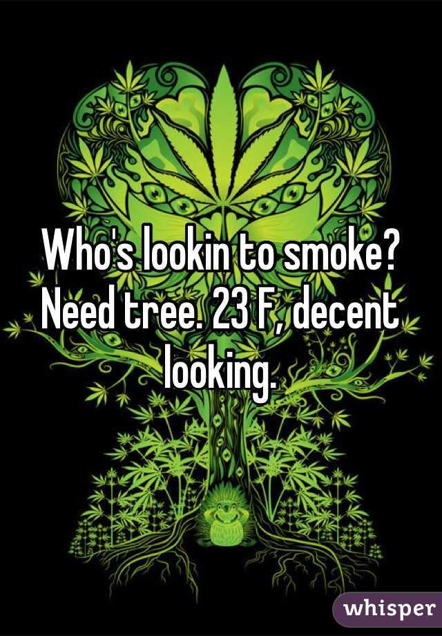 Who's lookin to smoke? Need tree. 23 F, decent looking.