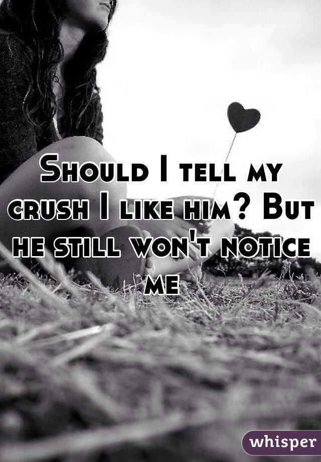 Should I tell my crush I like him? But he still won't notice me