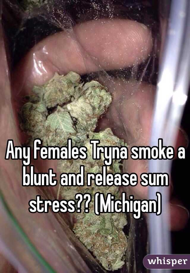 Any females Tryna smoke a blunt and release sum stress?? (Michigan)