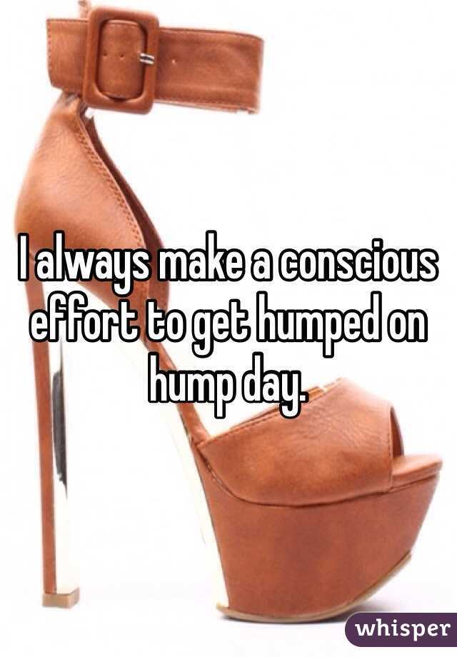 I always make a conscious effort to get humped on hump day.