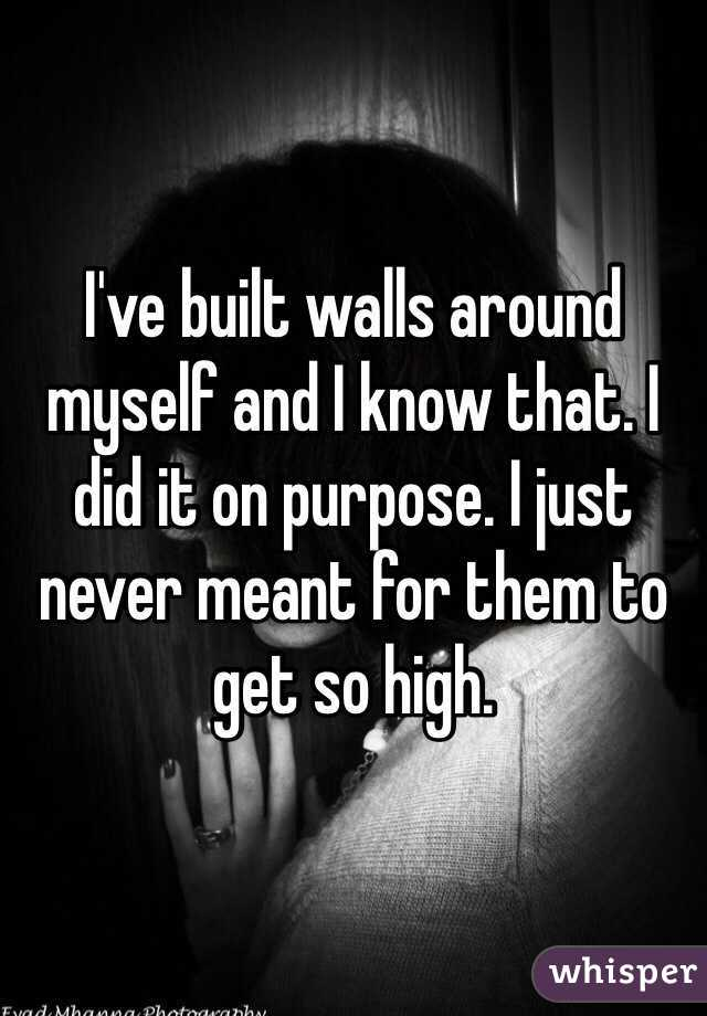 I've built walls around myself and I know that. I did it on purpose. I just never meant for them to get so high.