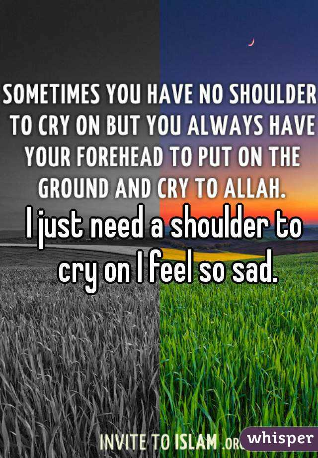 I just need a shoulder to cry on I feel so sad.