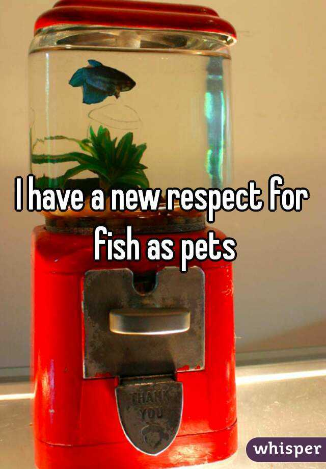 I have a new respect for fish as pets