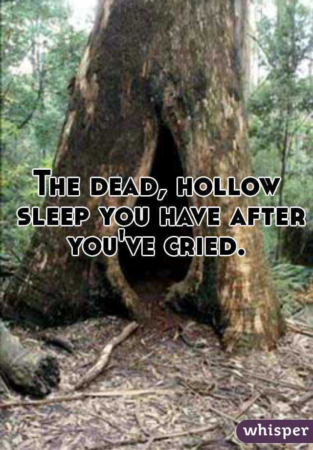 The dead, hollow sleep you have after you've cried.