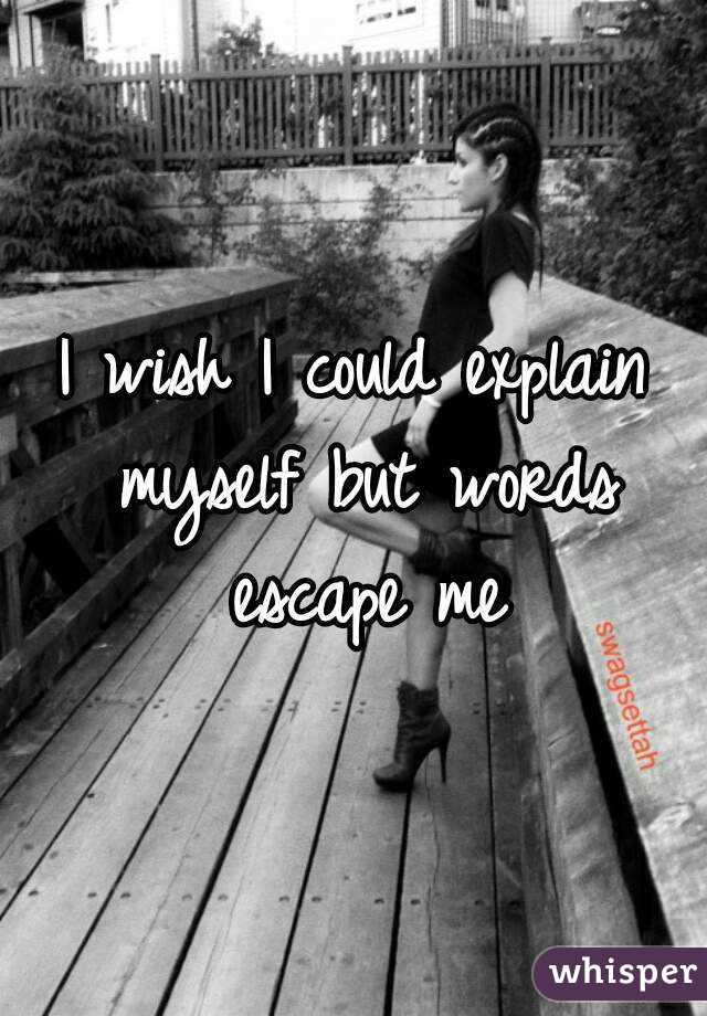 I wish I could explain myself but words escape me