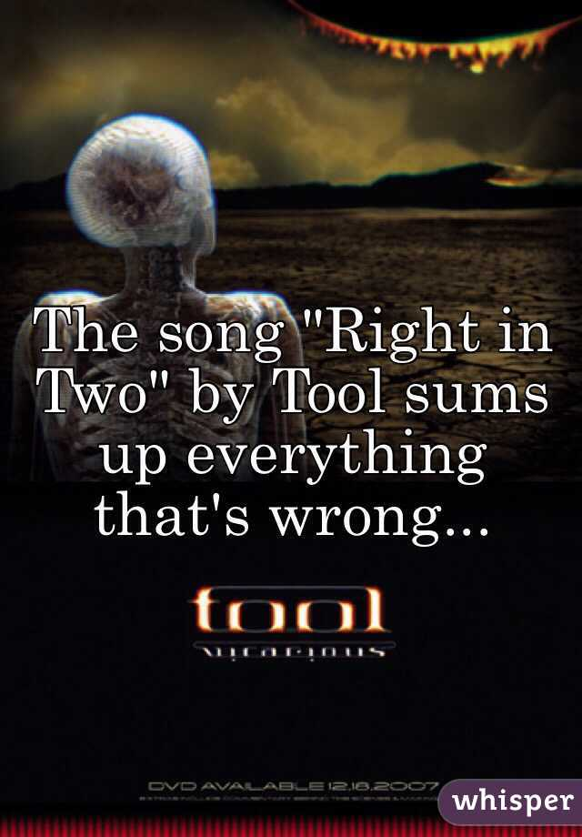 "The song ""Right in Two"" by Tool sums up everything that's wrong..."