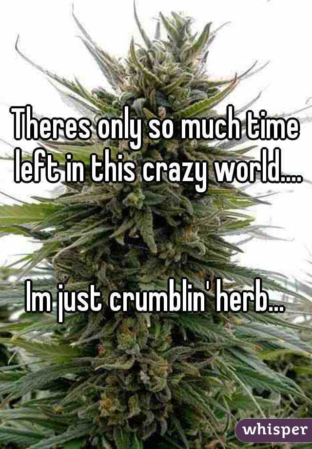 Theres only so much time left in this crazy world....   Im just crumblin' herb...