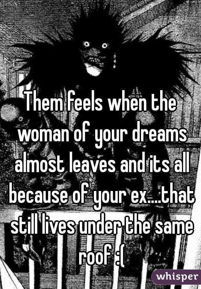 Them feels when the woman of your dreams almost leaves and its all because of your ex....that still lives under the same roof :(