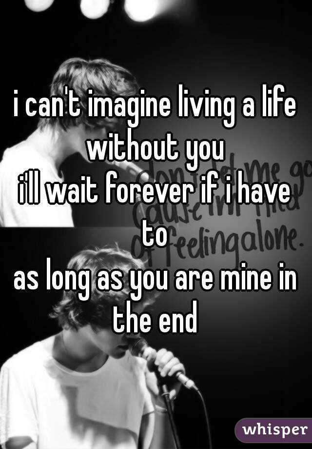 i can't imagine living a life without you  i'll wait forever if i have to  as long as you are mine in the end