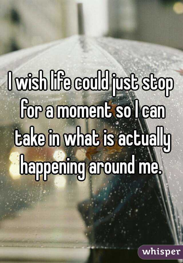 I wish life could just stop for a moment so I can take in what is actually happening around me.