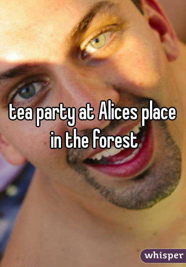 tea party at Alices place in the forest